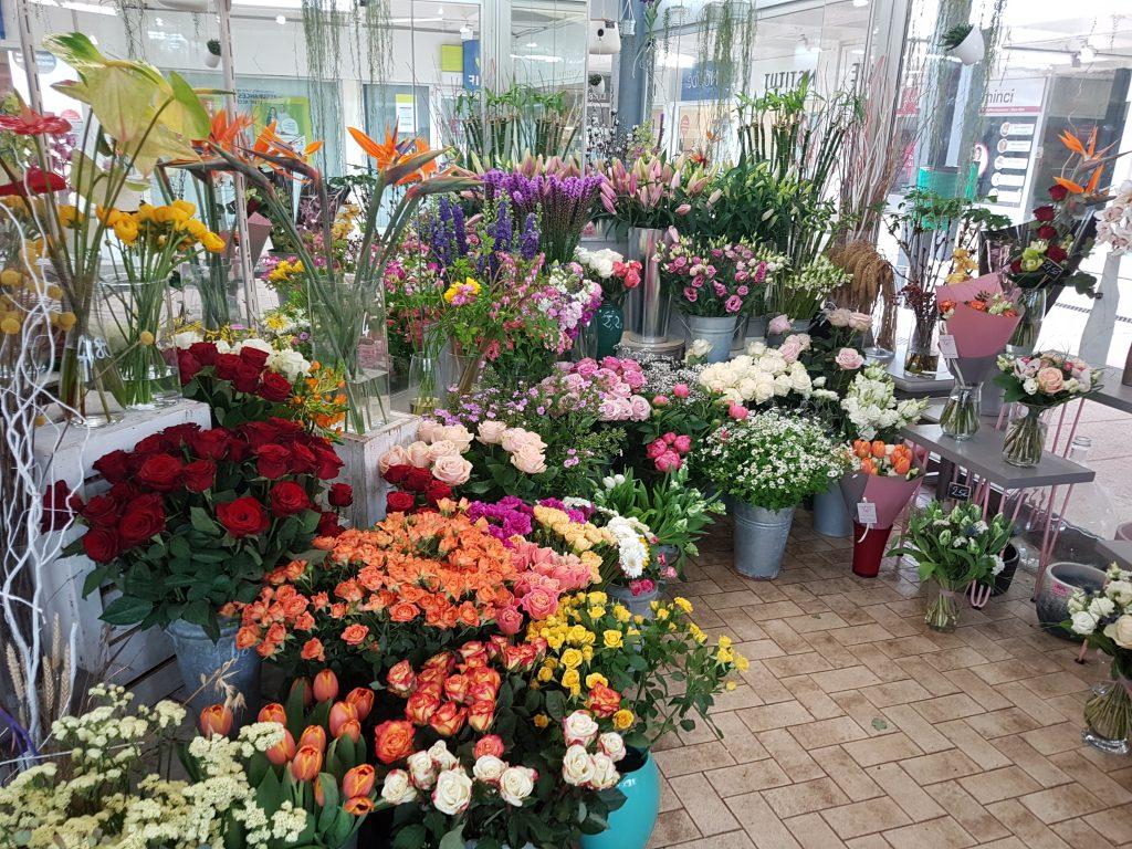 Venez découvrir notre boutique dans le centre ville d'Ambérieu-en-Bugey. Nous serons heureux de partager avec vous nos astuces, vous présenter nos dernières trouvailles en plantes d'intérieur ou d'extérieur et de vous accompagner dans le choix d'une réalisation florale qui égayera votre intérieur ou celui de la personne à qui vous allez l'offrir.... [https://www.mariedanede.fr/services/livraison/amberieu-en-bugey/]