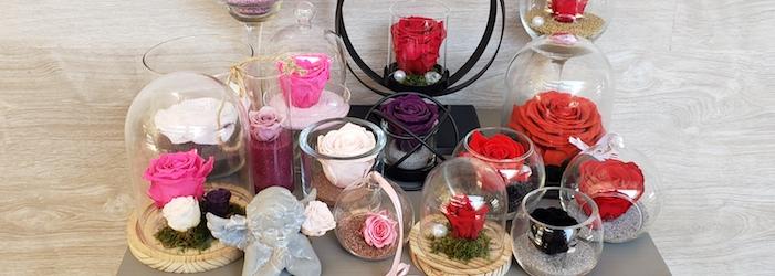 Les roses éternelles de Marie Danède