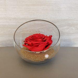 Grosse rose éternelle dans sa verrerie Marie Danède